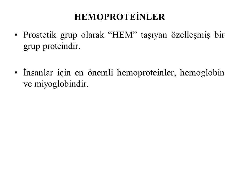 """HEMOPROTEİNLER Prostetik grup olarak """"HEM"""" taşıyan özelleşmiş bir grup proteindir. İnsanlar için en önemli hemoproteinler, hemoglobin ve miyoglobindir"""