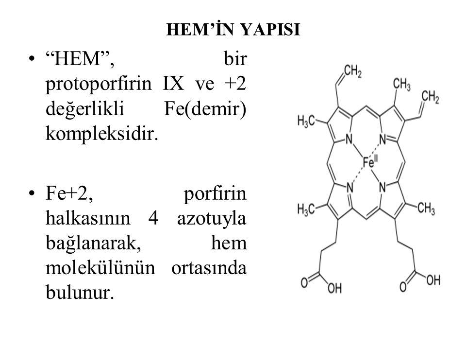 """HEM'İN YAPISI """"HEM"""", bir protoporfirin IX ve +2 değerlikli Fe(demir) kompleksidir. Fe+2, porfirin halkasının 4 azotuyla bağlanarak, hem molekülünün or"""