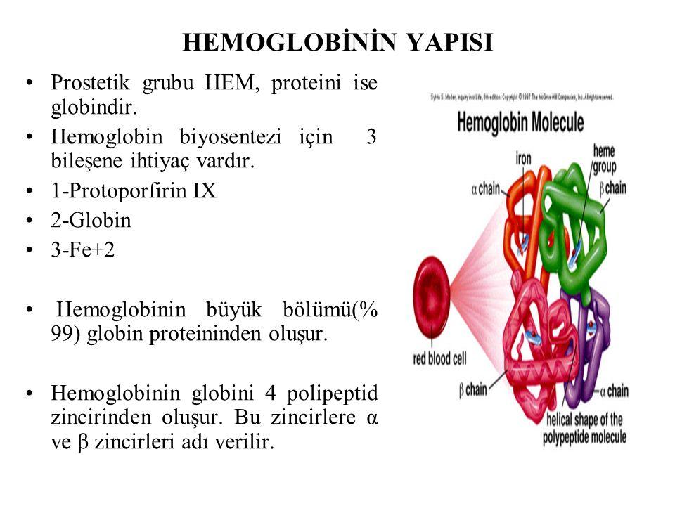 HEMOGLOBİNİN YAPISI Prostetik grubu HEM, proteini ise globindir. Hemoglobin biyosentezi için 3 bileşene ihtiyaç vardır. 1-Protoporfirin IX 2-Globin 3-