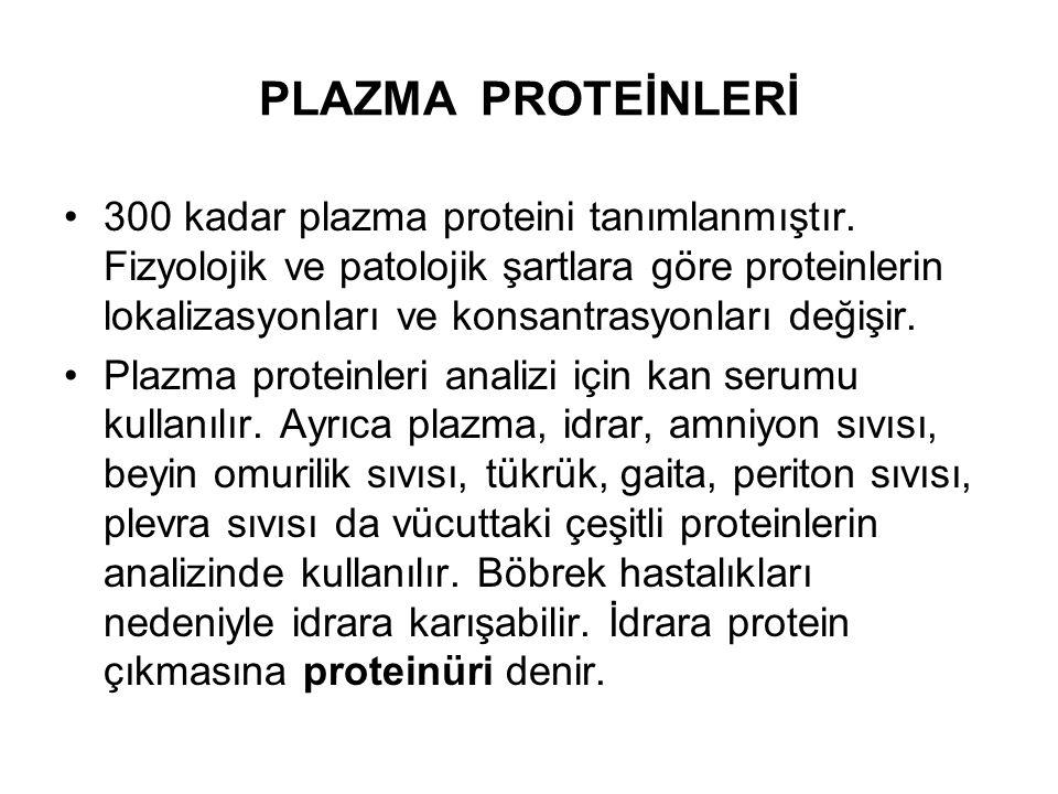 PLAZMA PROTEİNLERİ 300 kadar plazma proteini tanımlanmıştır. Fizyolojik ve patolojik şartlara göre proteinlerin lokalizasyonları ve konsantrasyonları