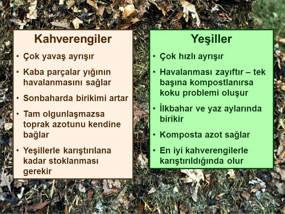 Kahverengiler Çok yavaş ayrışır Kaba parçalar yığının havalanmasını sağlar Sonbaharda birikimi artar Tam olgunlaşmazsa toprak azotunu kendine bağlar Yeşillerle karıştırılana kadar stoklanması gerekir Yeşiller Çok hızlı ayrışır Havalanması zayıftır – tek başına kompostlanırsa koku problemi oluşur İlkbahar ve yaz aylarında birikir Komposta azot sağlar En iyi kahverengilerle karıştırıldığında olur
