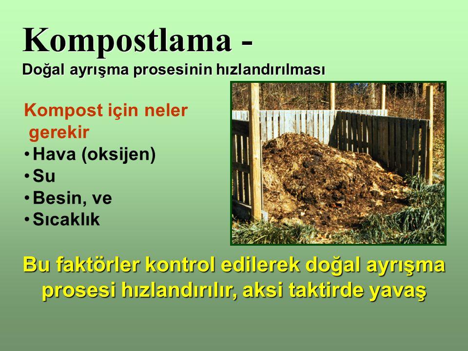 Kompost Kullanımı Çim alanlarına serme –Çim alanına zarar vermemesi için iyice olgun olmalı –Yüzeye öğütülmüş-elenmiş kompost serilmeli –Su tutumunu artırır, yavaş salınımlı gübre görevi görür, toprağın kompaktlaşmasını engeller Saksı toprağı karışımı –Bitkilere zarar vermemsi için olgun olmalı –Elenmiş olmalı –Hacim olarak 1/3 oranından fazla karıştırılmamalıdır