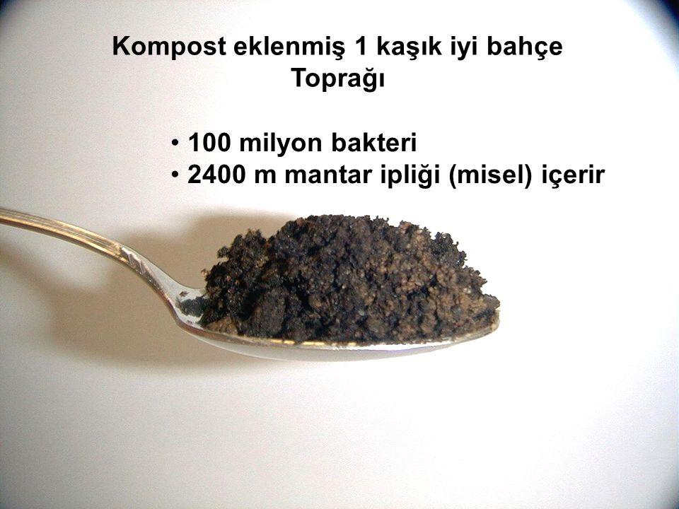 Kompost eklenmiş 1 kaşık iyi bahçe Toprağı 100 milyon bakteri 2400 m mantar ipliği (misel) içerir