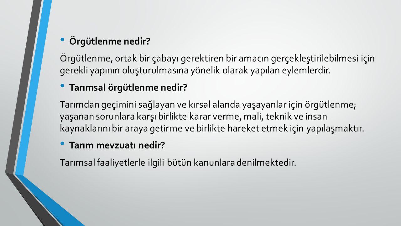 Türkiye nin tarımsal yapısı Az gelişmiş ülkelerdeki gibi, ülkemizde de tarım dual (çift yönlü) bir yapıya sahip olup, küçük köylü işletmelerini barındıran geleneksel kesimle büyük işletmelerin oluşturduğu ticari (modern) kesimden oluşmaktadır.