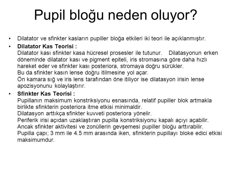 Pupil bloğu neden oluyor.
