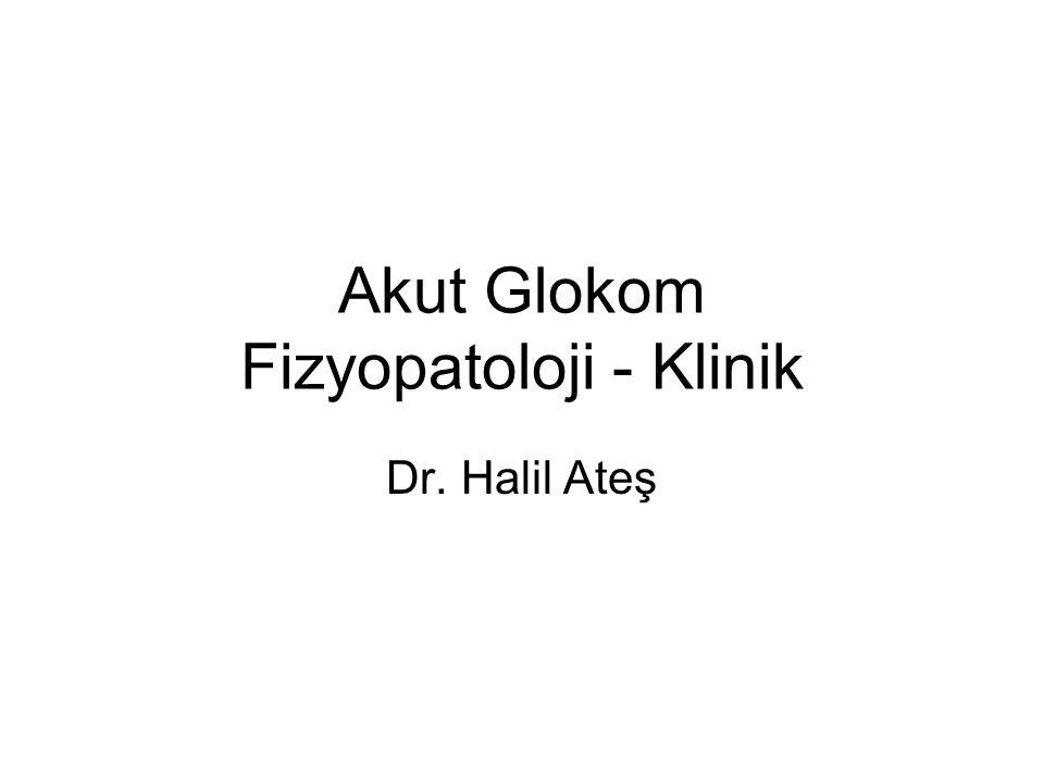 Akut Glokom Fizyopatoloji - Klinik Dr. Halil Ateş