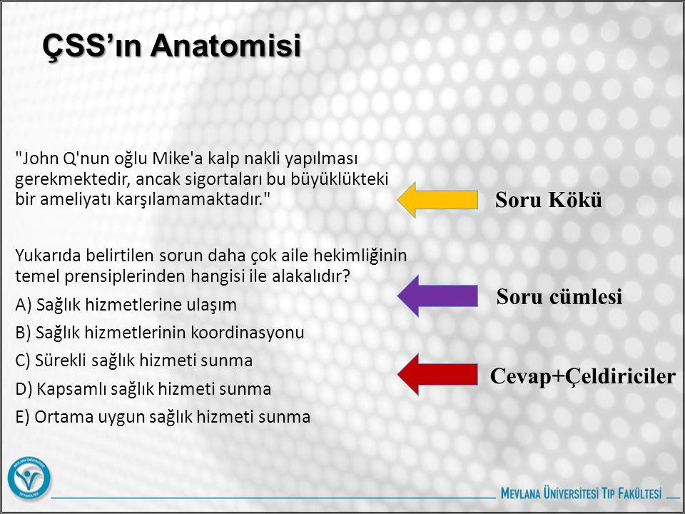 ÇSS'ın Anatomisi