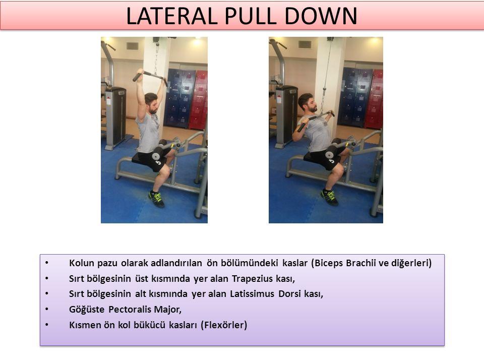 LATERAL PULL DOWN Kolun pazu olarak adlandırılan ön bölümündeki kaslar (Biceps Brachii ve diğerleri) Sırt bölgesinin üst kısmında yer alan Trapezius kası, Sırt bölgesinin alt kısmında yer alan Latissimus Dorsi kası, Göğüste Pectoralis Major, Kısmen ön kol bükücü kasları (Flexörler) Kolun pazu olarak adlandırılan ön bölümündeki kaslar (Biceps Brachii ve diğerleri) Sırt bölgesinin üst kısmında yer alan Trapezius kası, Sırt bölgesinin alt kısmında yer alan Latissimus Dorsi kası, Göğüste Pectoralis Major, Kısmen ön kol bükücü kasları (Flexörler)