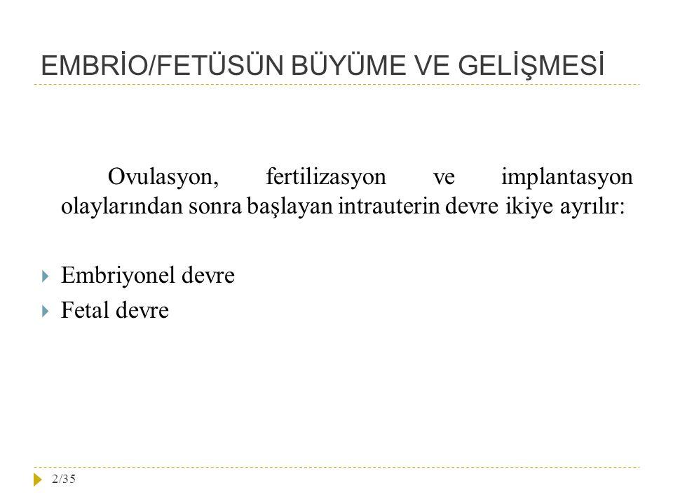 EMBRİO/FETÜSÜN BÜYÜME VE GELİŞMESİ Ovulasyon, fertilizasyon ve implantasyon olaylarından sonra başlayan intrauterin devre ikiye ayrılır:  Embriyonel devre  Fetal devre 2/35