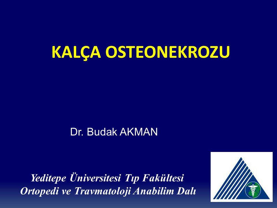 Dr. Budak AKMAN Yeditepe Üniversitesi Tıp Fakültesi Ortopedi ve Travmatoloji Anabilim Dalı KALÇA OSTEONEKROZU