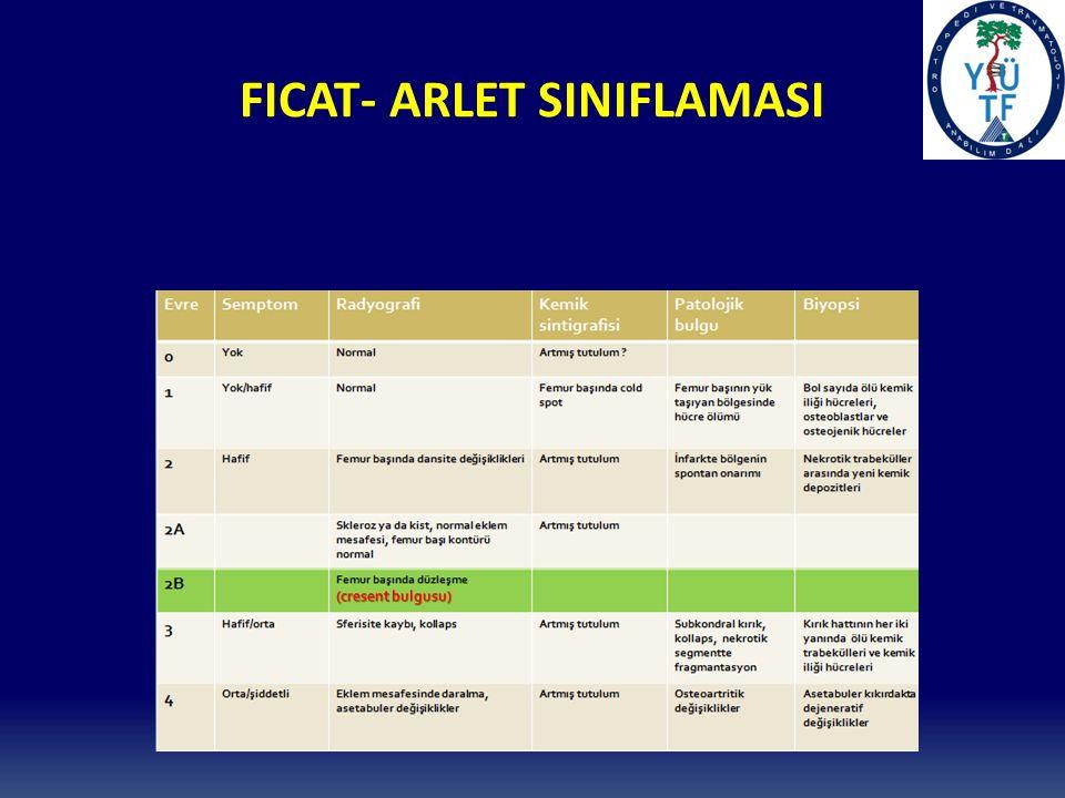 FICAT- ARLET SINIFLAMASI