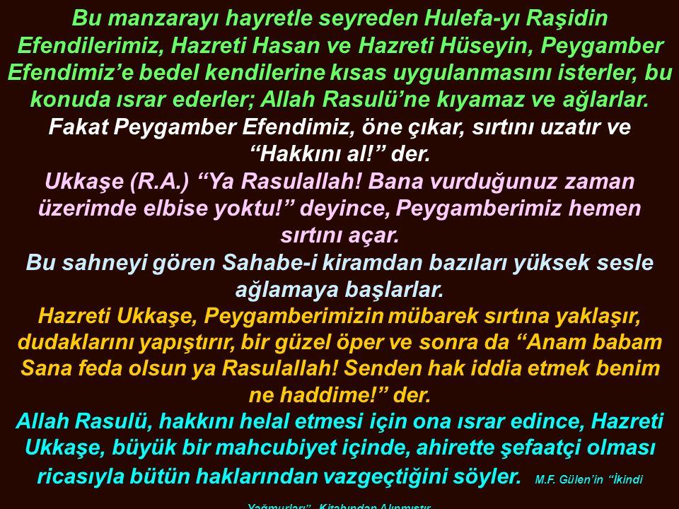 Bu manzarayı hayretle seyreden Hulefa-yı Raşidin Efendilerimiz, Hazreti Hasan ve Hazreti Hüseyin, Peygamber Efendimiz'e bedel kendilerine kısas uygula