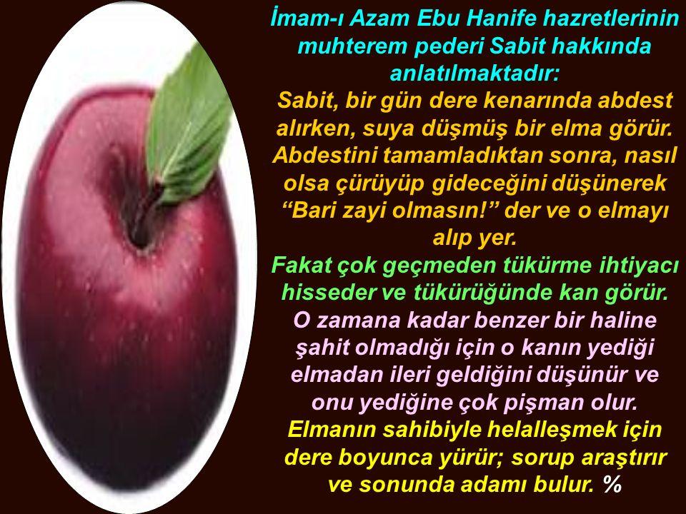 İmam-ı Azam Ebu Hanife hazretlerinin muhterem pederi Sabit hakkında anlatılmaktadır: Sabit, bir gün dere kenarında abdest alırken, suya düşmüş bir elm