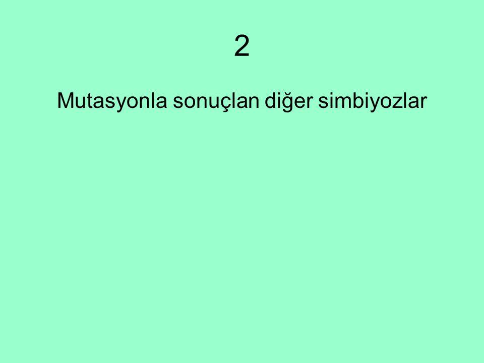 2 Mutasyonla sonuçlan diğer simbiyozlar
