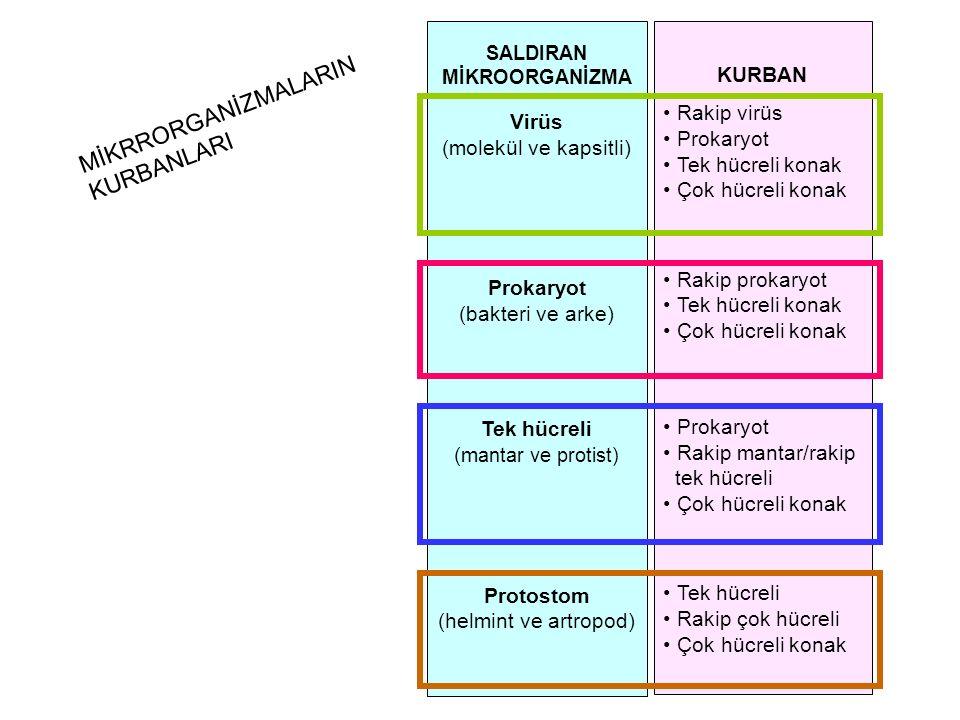 KURBAN Rakip virüs Prokaryot Tek hücreli konak Çok hücreli konak Rakip prokaryot Tek hücreli konak Çok hücreli konak Prokaryot Rakip mantar/rakip tek