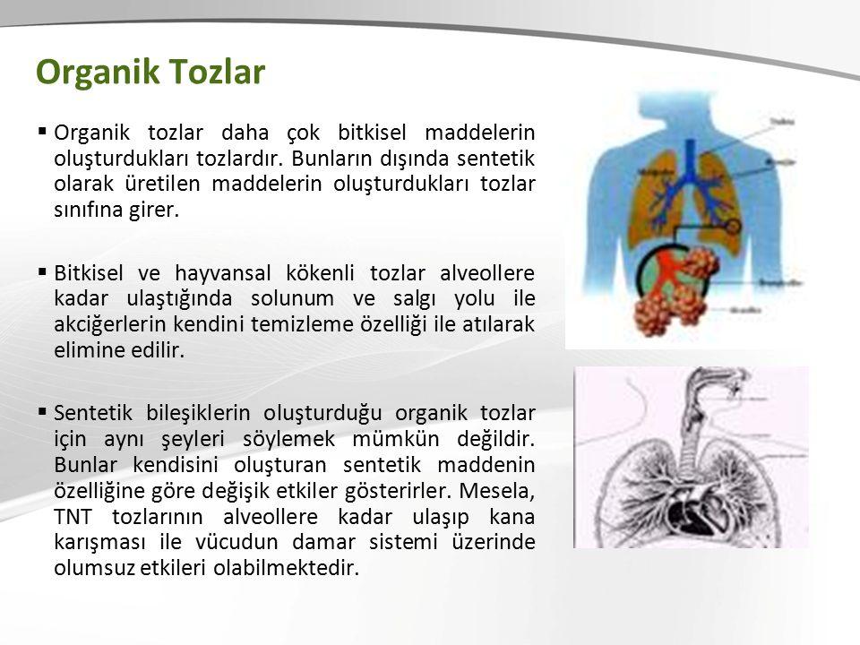 Organik Tozlar  Organik tozlar daha çok bitkisel maddelerin oluşturdukları tozlardır.