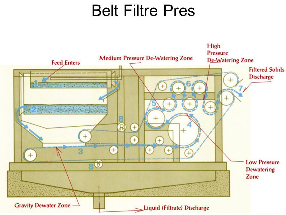 Belt Filtre Pres