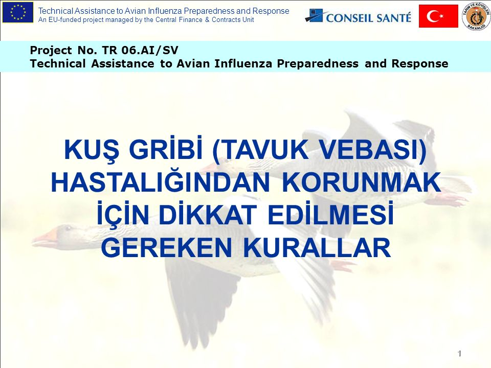 Technical Assistance to Avian Influenza Preparedness and Response An EU-funded project managed by the Central Finance & Contracts Unit 12 Aynı çiftlikte sadece bir türden hayvan yetiştirilmelidir.