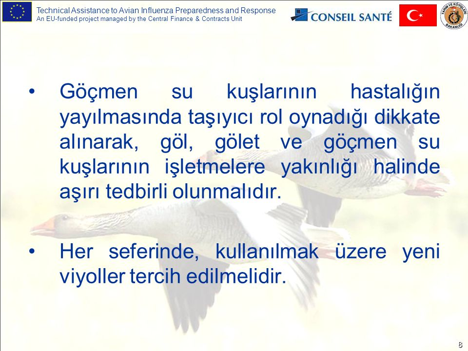Technical Assistance to Avian Influenza Preparedness and Response An EU-funded project managed by the Central Finance & Contracts Unit 8 Göçmen su kuş