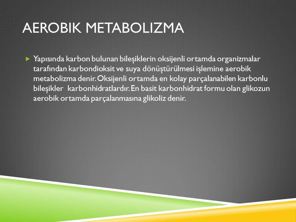 AEROBIK METABOLIZMA  Yapısında karbon bulunan bileşiklerin oksijenli ortamda organizmalar tarafından karbondioksit ve suya dönüştürülmesi işlemine aerobik metabolizma denir.