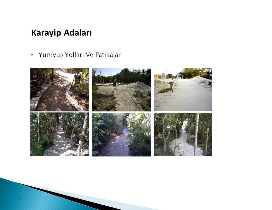 15 Yürüyüş Yolları Ve Patikalar Karayip Adaları