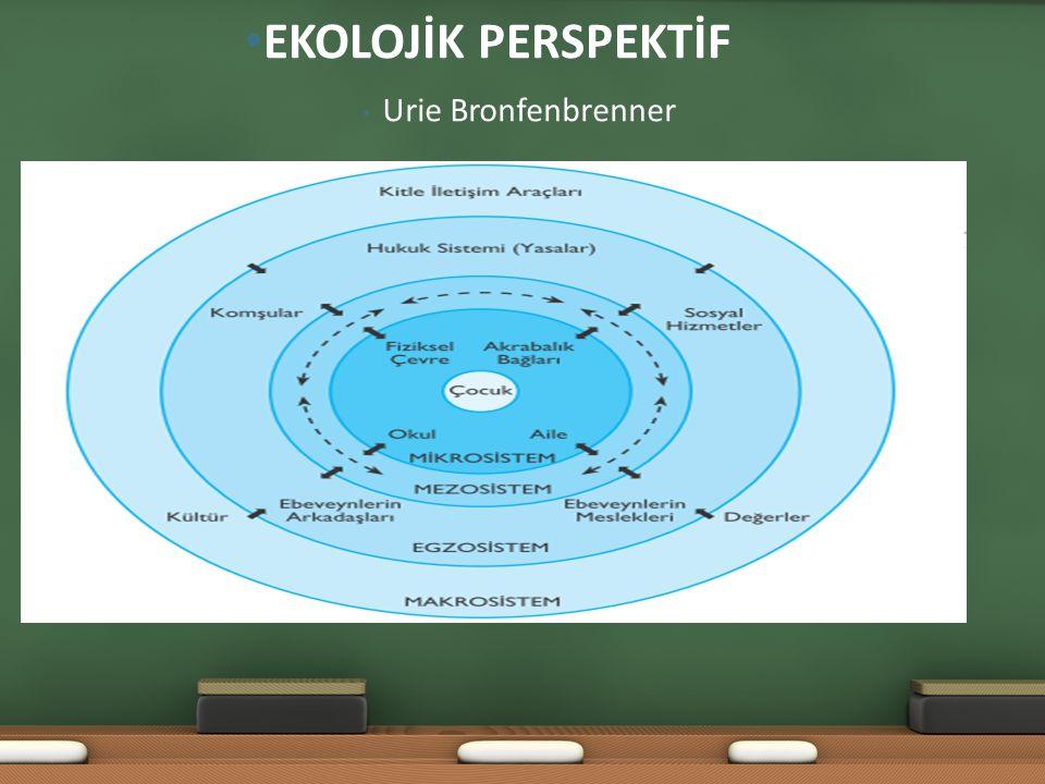 Urie Bronfenbrenner EKOLOJİK PERSPEKTİF