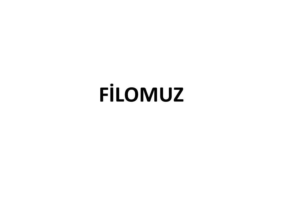 FİLOMUZ