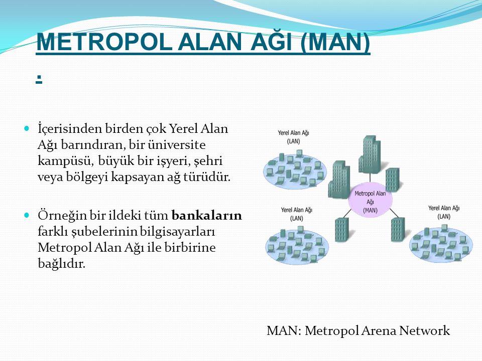 İçerisinden birden çok Yerel Alan Ağı barındıran, bir üniversite kampüsü, büyük bir işyeri, şehri veya bölgeyi kapsayan ağ türüdür. Örneğin bir ildeki