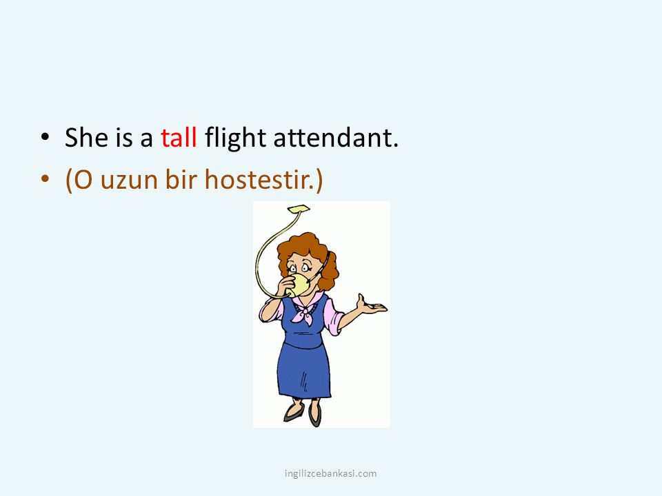 She is a tall flight attendant. (O uzun bir hostestir.) ingilizcebankasi.com