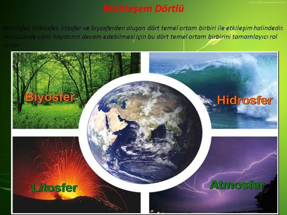 Muhteşem Dörtlü Atmosfer, hidrosfer, litosfer ve biyosferden oluşan dört temel ortam birbiri ile etkileşim halindedir. Yeryüzünde canlı hayatının deva