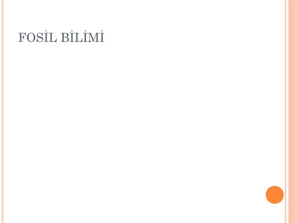 FOSİL BİLİMİ