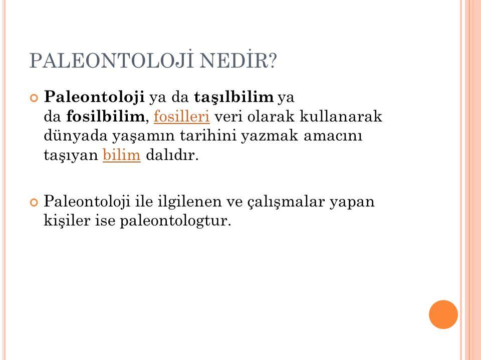 PALEONTOLOJİ NEDİR.