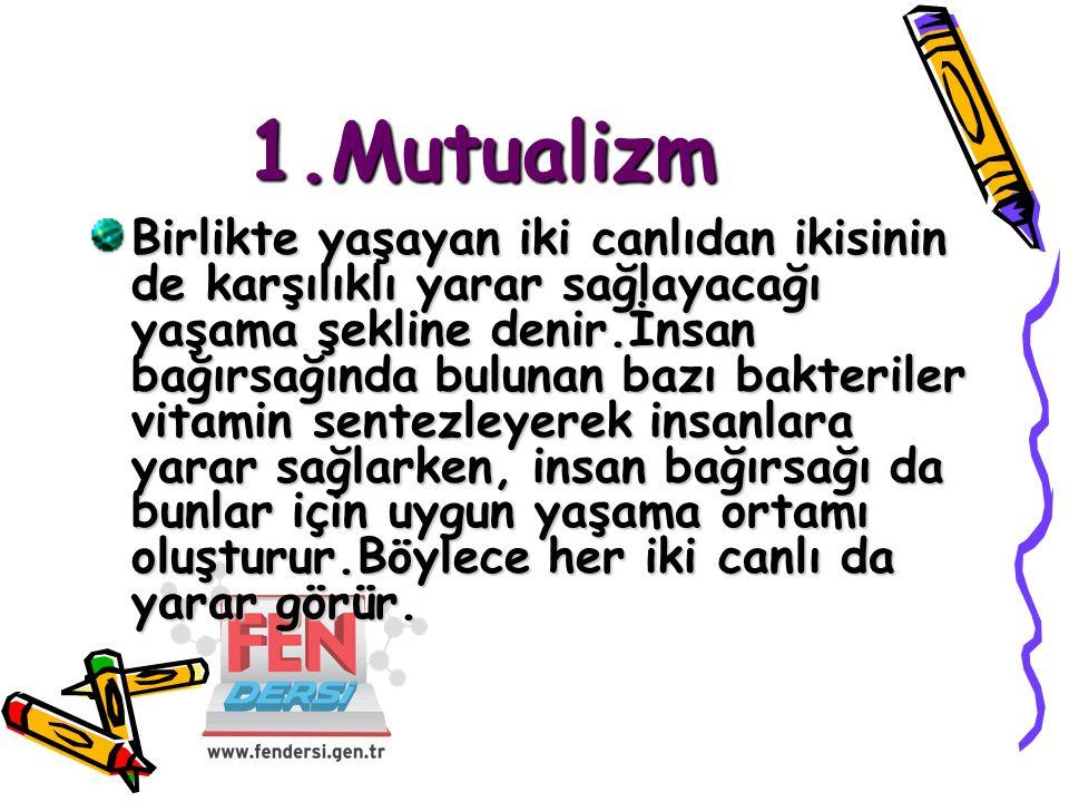 1.Mutualizm Birlikte yaşayan iki canlıdan ikisinin de karşılıklı yarar sağlayacağı yaşama şekline denir.İnsan bağırsağında bulunan bazı bakteriler vit