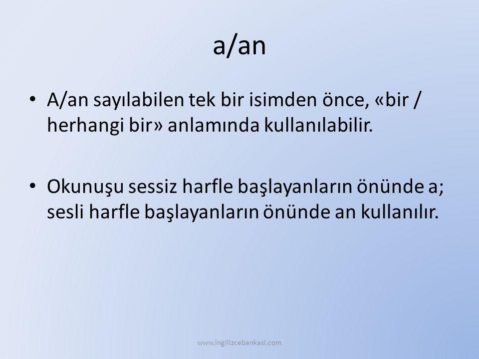 a/an A/an sayılabilen tek bir isimden önce, «bir / herhangi bir» anlamında kullanılabilir.