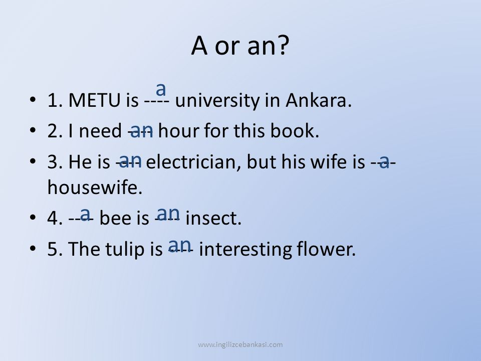 A or an? 1. METU is ---- university in Ankara. 2. I need ---- hour for this book. 3. He is ---- electrician, but his wife is ---- housewife. 4. ---- b