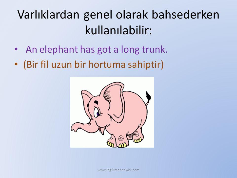 Varlıklardan genel olarak bahsederken kullanılabilir: An elephant has got a long trunk. (Bir fil uzun bir hortuma sahiptir) www.ingilizcebankasi.com