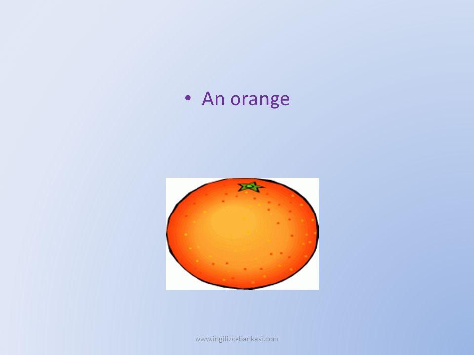 An orange www.ingilizcebankasi.com