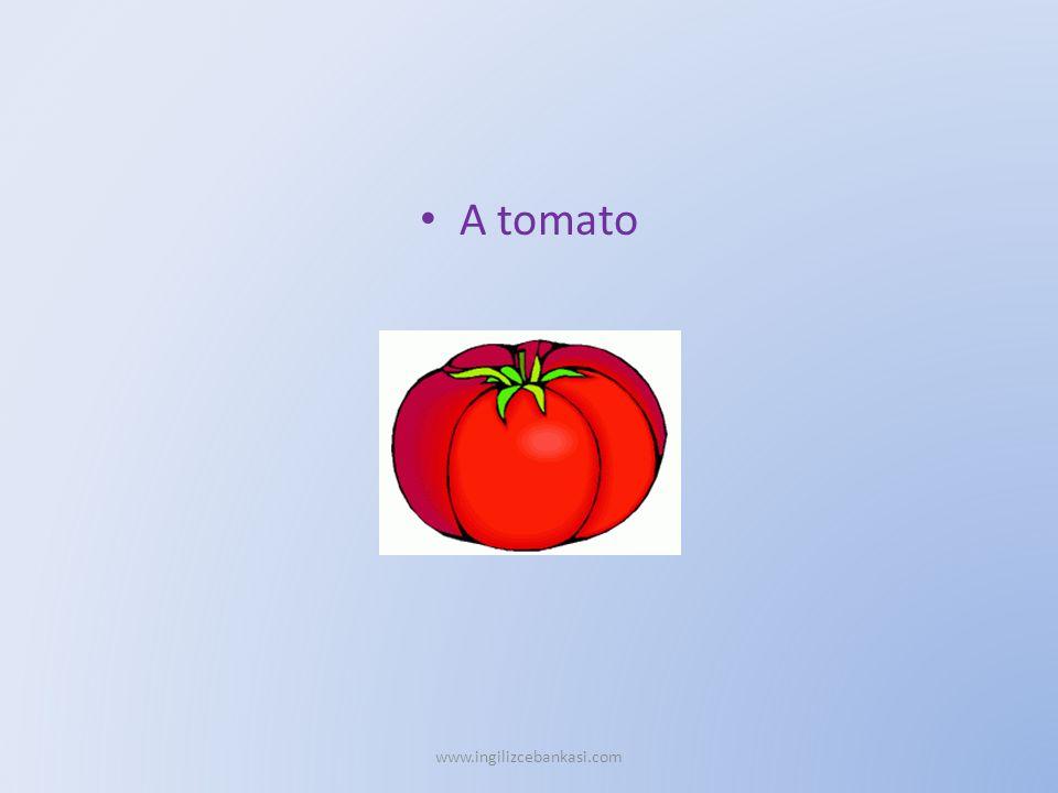 A tomato www.ingilizcebankasi.com