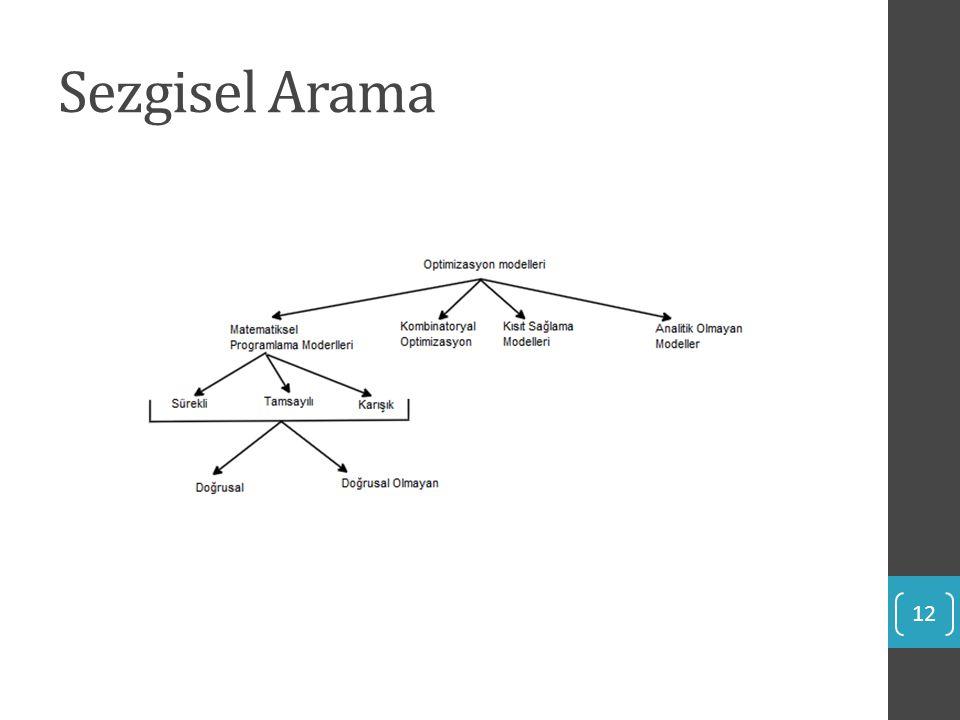 Sezgisel Arama 12