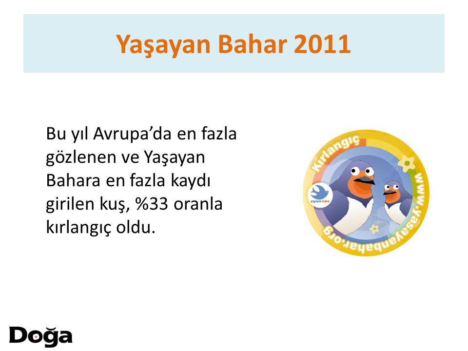 Bu yıl Avrupa'da en fazla gözlenen ve Yaşayan Bahara en fazla kaydı girilen kuş, %33 oranla kırlangıç oldu. Yaşayan Bahar 2011