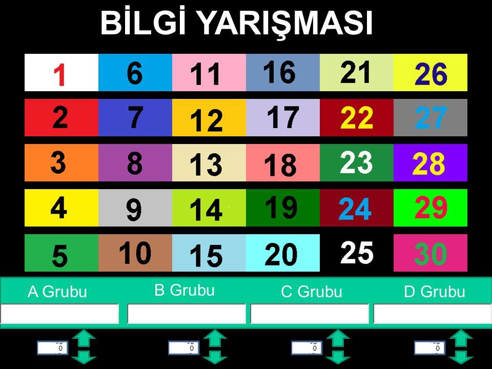 11 Ana Sayfa