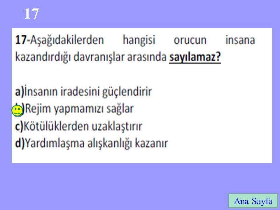 17 Ana Sayfa