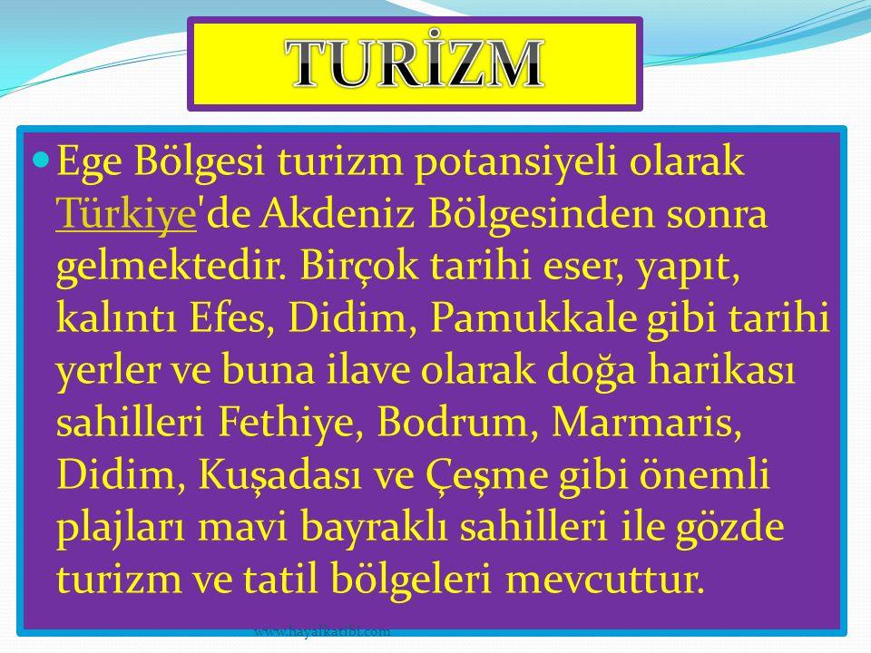 Ege Bölgesi turizm potansiyeli olarak Türkiye'de Akdeniz Bölgesinden sonra gelmektedir. Birçok tarihi eser, yapıt, kalıntı Efes, Didim, Pamukkale gibi