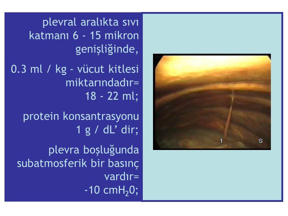 1.Bronkoskopi, 2.Kapalı plevra biopsisi 3.Spiral dinamik bilgisayarlı tomografi.