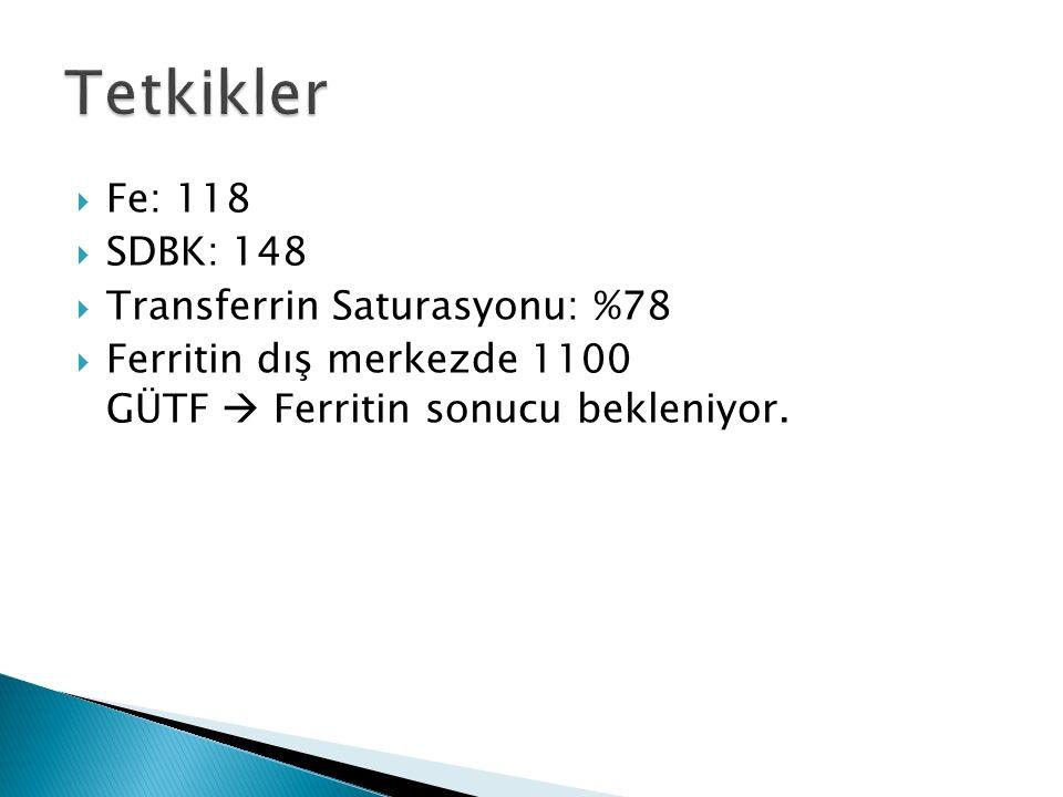  Fe: 118  SDBK: 148  Transferrin Saturasyonu: %78  Ferritin dış merkezde 1100 GÜTF  Ferritin sonucu bekleniyor.