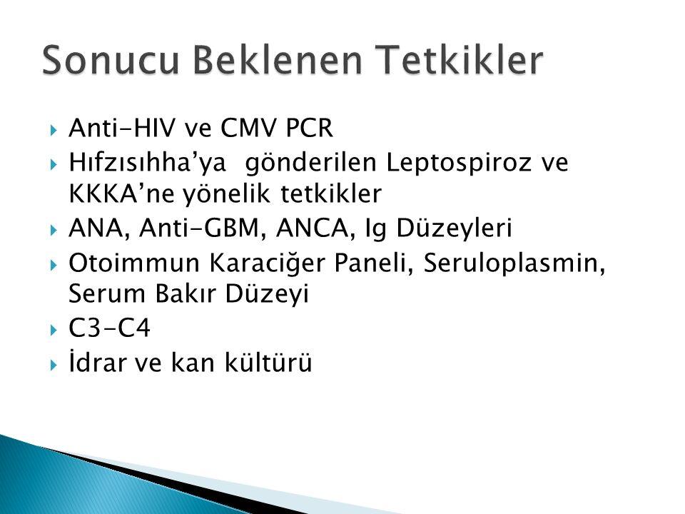  Anti-HIV ve CMV PCR  Hıfzısıhha'ya gönderilen Leptospiroz ve KKKA'ne yönelik tetkikler  ANA, Anti-GBM, ANCA, Ig Düzeyleri  Otoimmun Karaciğer Paneli, Seruloplasmin, Serum Bakır Düzeyi  C3-C4  İdrar ve kan kültürü