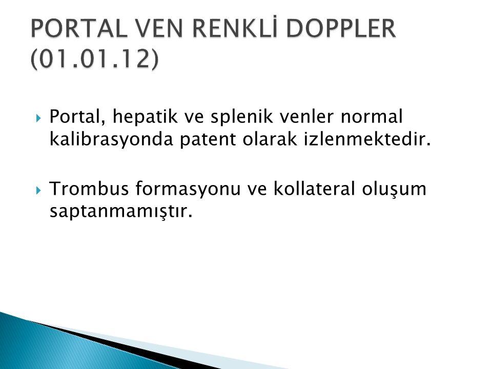  Portal, hepatik ve splenik venler normal kalibrasyonda patent olarak izlenmektedir.  Trombus formasyonu ve kollateral oluşum saptanmamıştır.