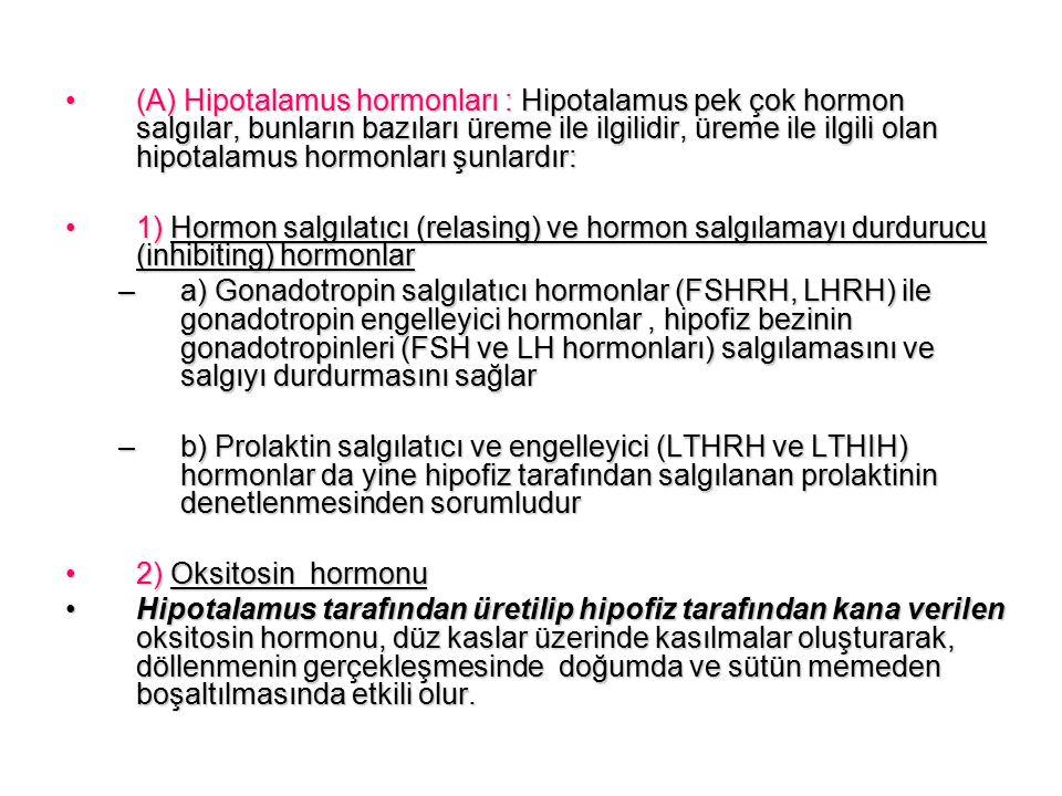(A) Hipotalamus hormonları : Hipotalamus pek çok hormon salgılar, bunların bazıları üreme ile ilgilidir, üreme ile ilgili olan hipotalamus hormonları şunlardır:(A) Hipotalamus hormonları : Hipotalamus pek çok hormon salgılar, bunların bazıları üreme ile ilgilidir, üreme ile ilgili olan hipotalamus hormonları şunlardır: 1) Hormon salgılatıcı (relasing) ve hormon salgılamayı durdurucu (inhibiting) hormonlar1) Hormon salgılatıcı (relasing) ve hormon salgılamayı durdurucu (inhibiting) hormonlar –a) Gonadotropin salgılatıcı hormonlar (FSHRH, LHRH) ile gonadotropin engelleyici hormonlar, hipofiz bezinin gonadotropinleri (FSH ve LH hormonları) salgılamasını ve salgıyı durdurmasını sağlar –b) Prolaktin salgılatıcı ve engelleyici (LTHRH ve LTHIH) hormonlar da yine hipofiz tarafından salgılanan prolaktinin denetlenmesinden sorumludur 2) Oksitosin hormonu2) Oksitosin hormonu Hipotalamus tarafından üretilip hipofiz tarafından kana verilen oksitosin hormonu, düz kaslar üzerinde kasılmalar oluşturarak, döllenmenin gerçekleşmesinde doğumda ve sütün memeden boşaltılmasında etkili olur.Hipotalamus tarafından üretilip hipofiz tarafından kana verilen oksitosin hormonu, düz kaslar üzerinde kasılmalar oluşturarak, döllenmenin gerçekleşmesinde doğumda ve sütün memeden boşaltılmasında etkili olur.