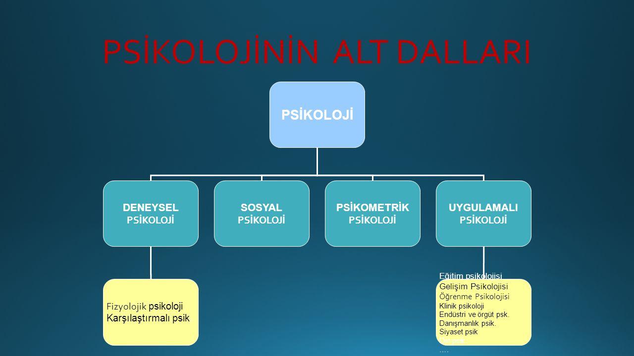 PSİKOLOJİNİN ALT DALLARI PSİKOLOJİ DENEYSEL PSİKOLOJİ SOSYAL PSİKOLOJİ PSİKOMETRİK PSİKOLOJİ UYGULAMALI PSİKOLOJİ Eğitim psikolojisi Gelişim Psikoloji