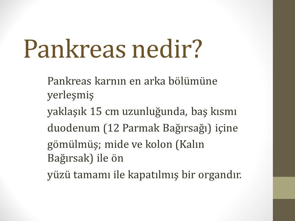 Pankreas nedir? Pankreas karnın en arka bölümüne yerleşmiş yaklaşık 15 cm uzunluğunda, baş kısmı duodenum (12 Parmak Bağırsağı) içine gömülmüş; mide v